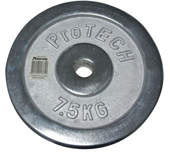 Protech 7,5 Kg Kromajlı Flanş. ürün görseli