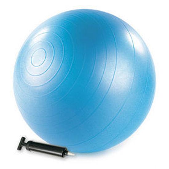 Merrithew Health & Fitness 55 cm Pilates Topu (ST06034). ürün görseli