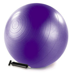 Resim Merrithew Health & Fitness Barrel  Denge Topu Pompalı 75cm  (ST-06049) Mor
